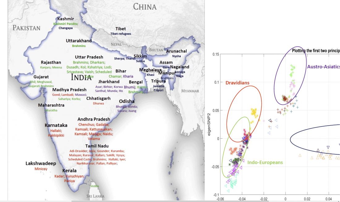 indian-population-genetics