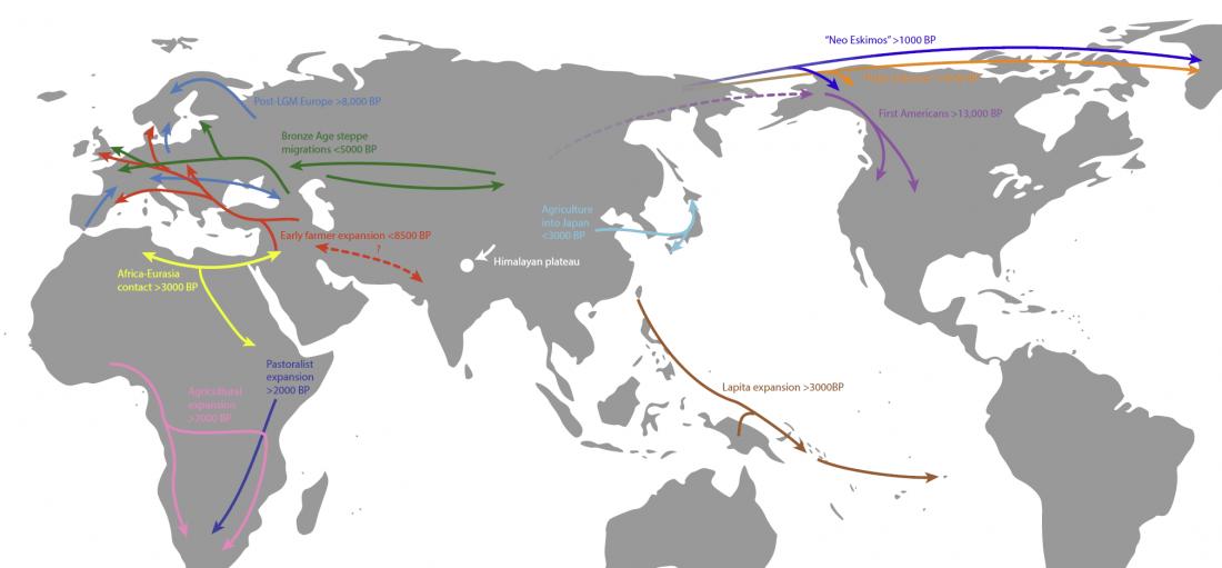 ancient-genomics-holocene-migrations