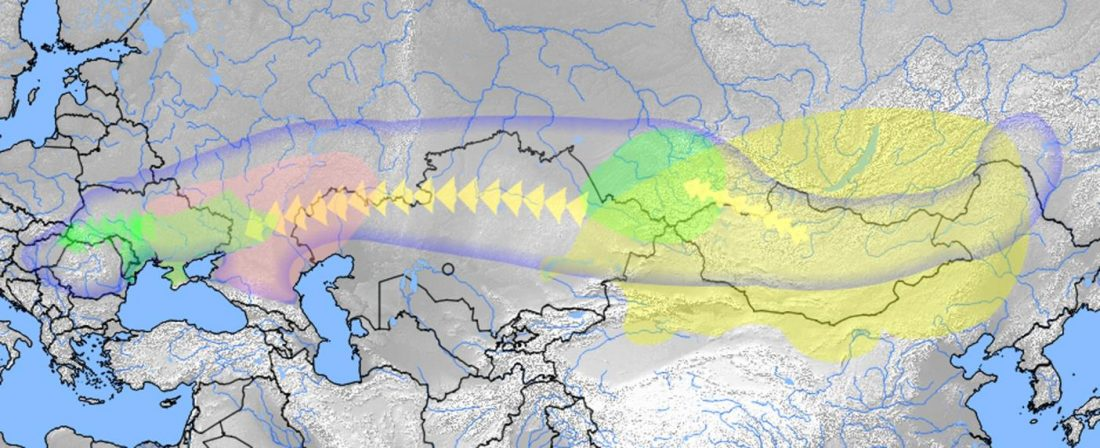 hungarian-conqueror-migrations