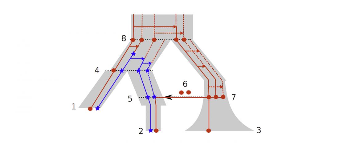 3-population-moran-model