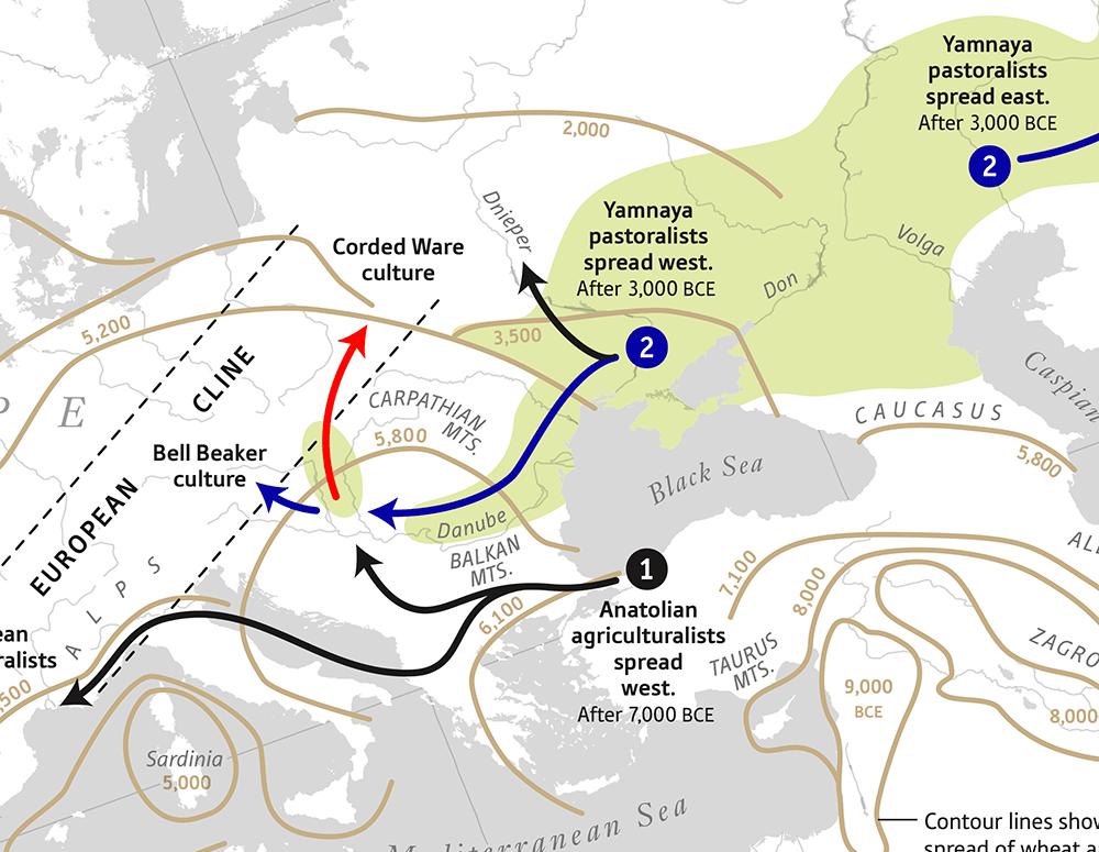 yamna-expansion-malopolska