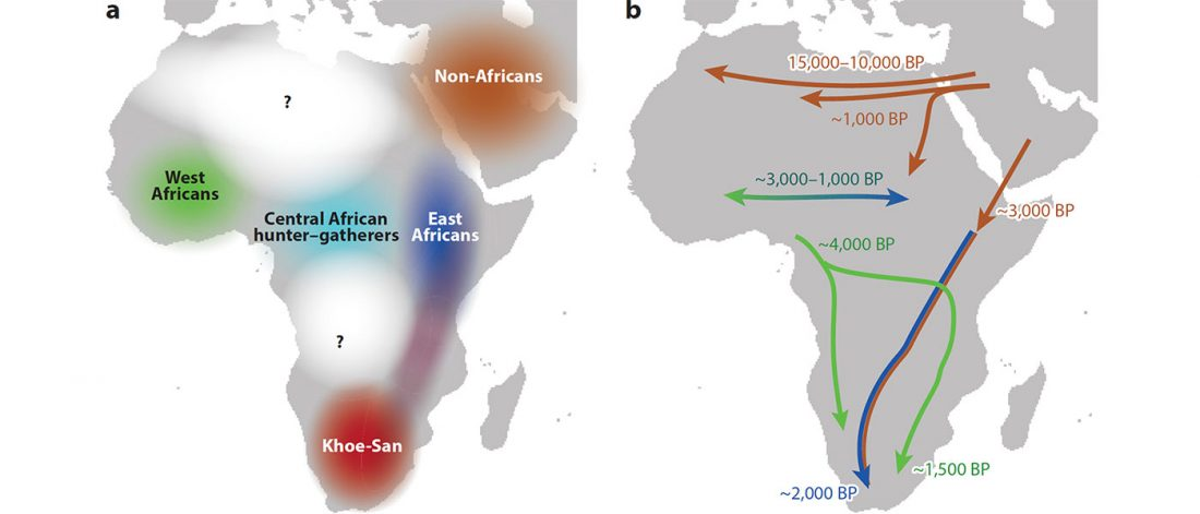 african-migrations