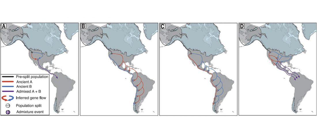 americas-dispersal