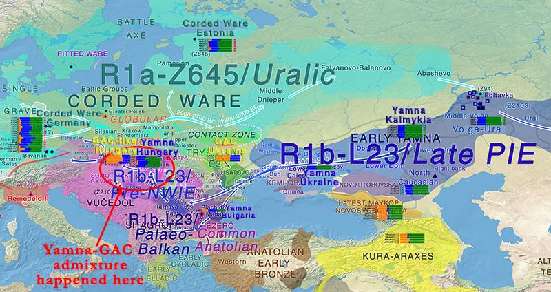 indo-european-uralic-migrations-yamna-gac