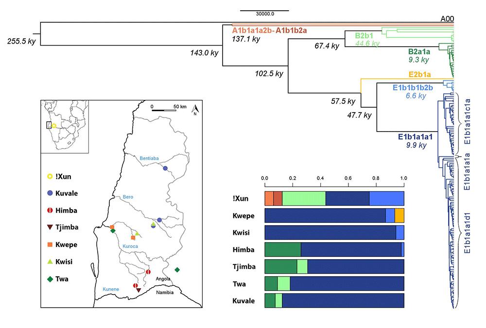 bantu-pastoralists