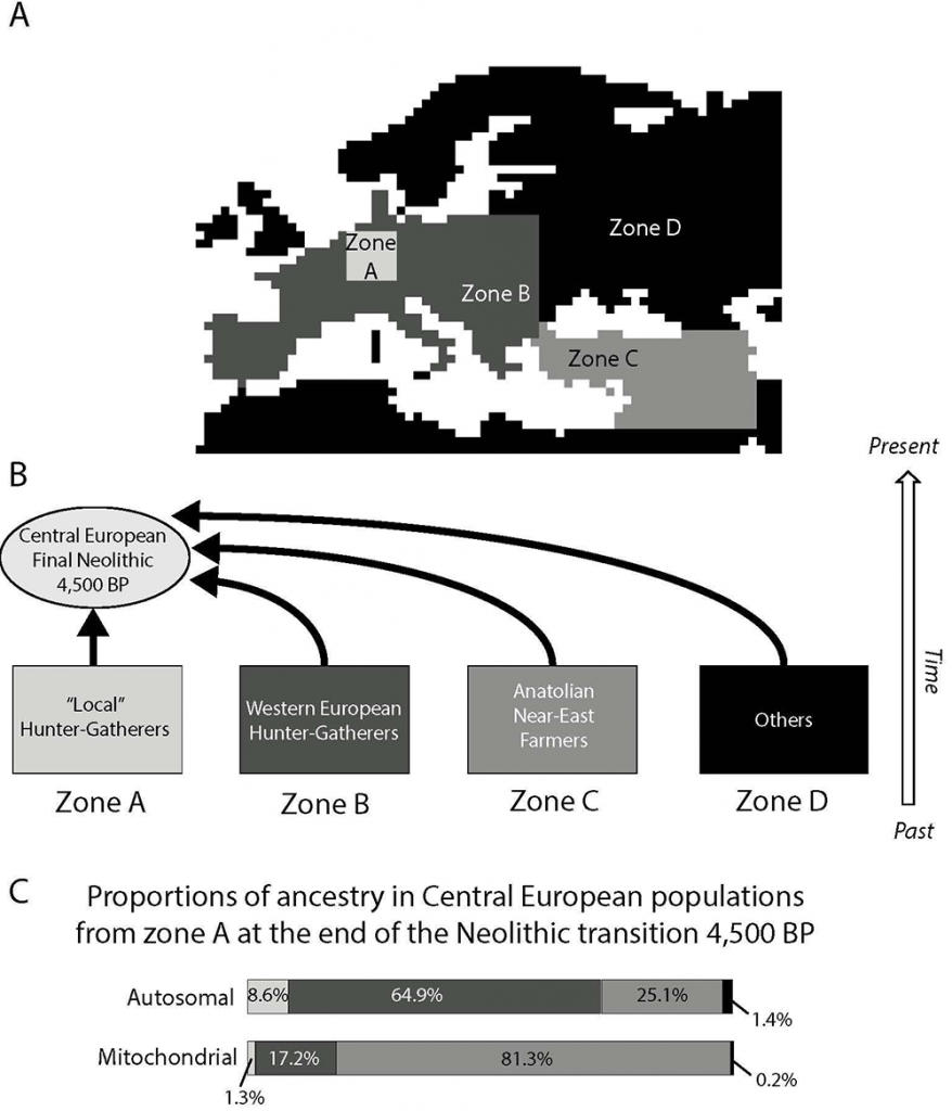 central-european-neolithic