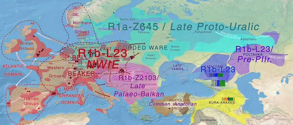 indo-european-uralic-bell-beaker-corded-ware-migrations