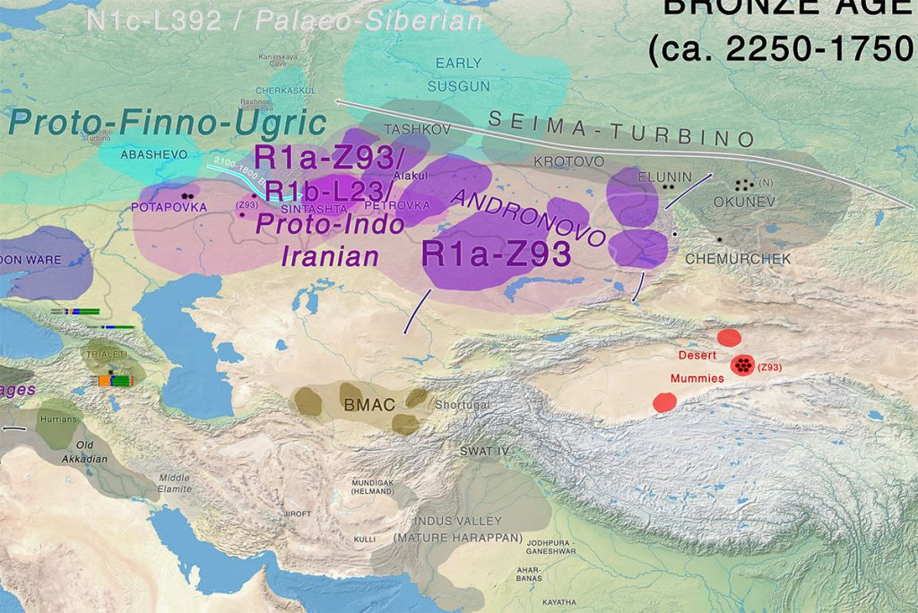 indo-european-uralic-migrations-okunevo-andronovo