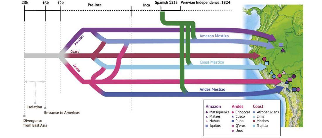 peru-population-history