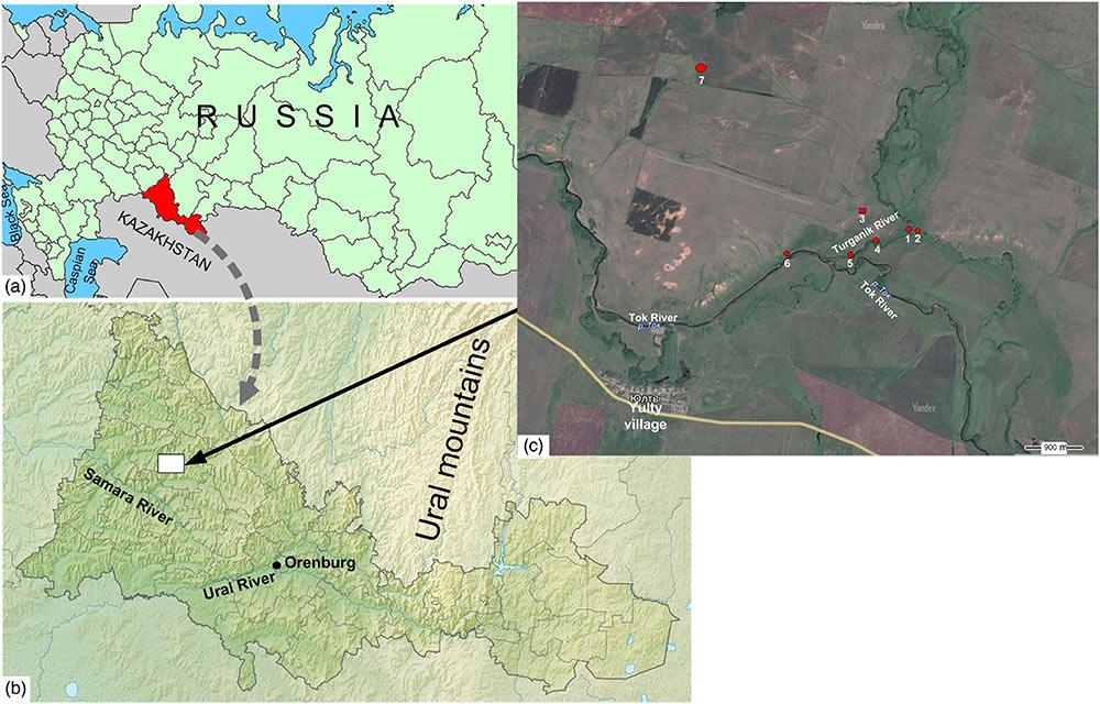 turganik-cis-ural-steppe