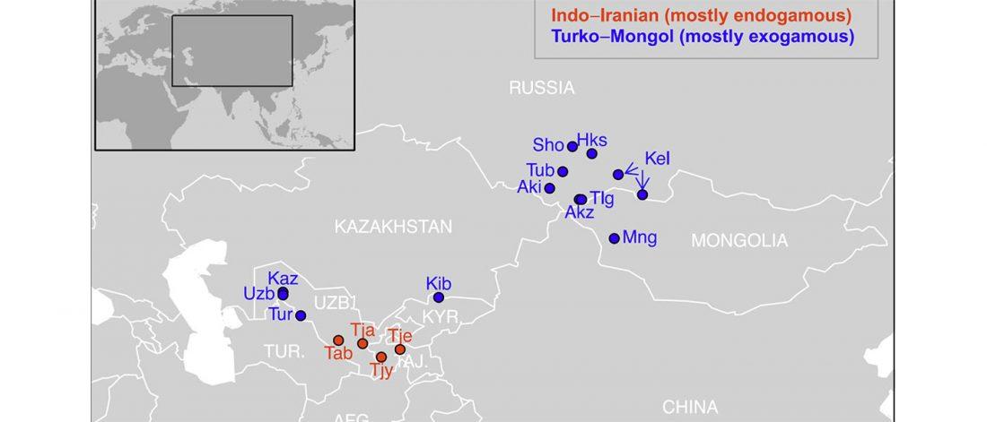 turko-mongol-indo-iranian