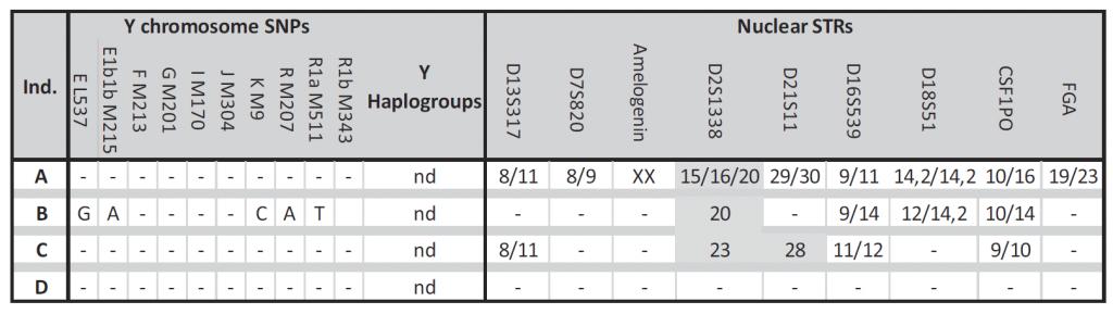 merovingian-y-chromosome