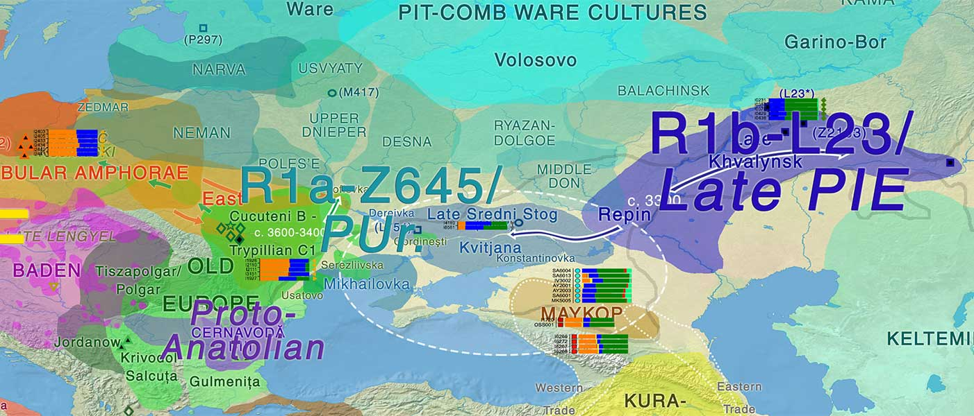 On the origin of haplogroup R1b-L51 in late Repin / early Yamna settlers