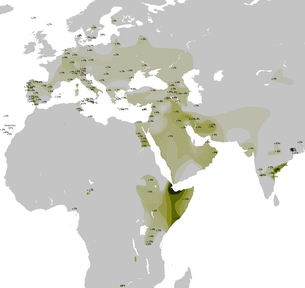 haplogroup-t-levant