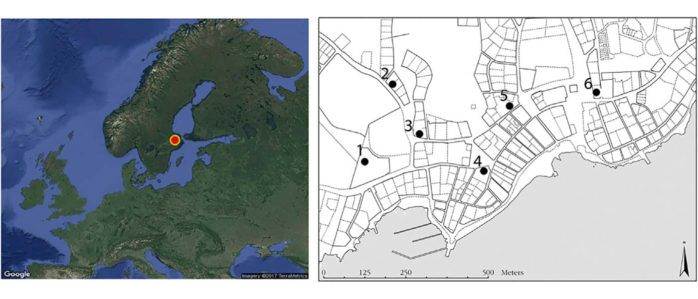 Viking Age town shows higher genetic diversity than Neolithic and Bronze Age
