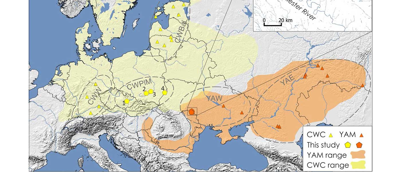 Mitogenomes show likely origin of elevated steppe ancestry in neighbouring Corded Ware groups
