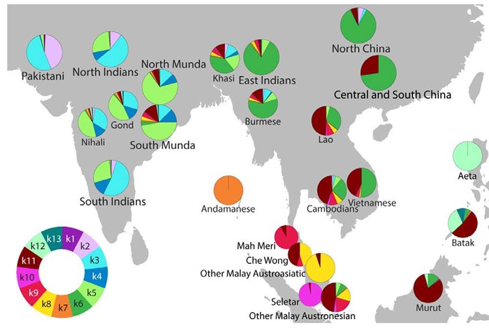 admixture-munda-india