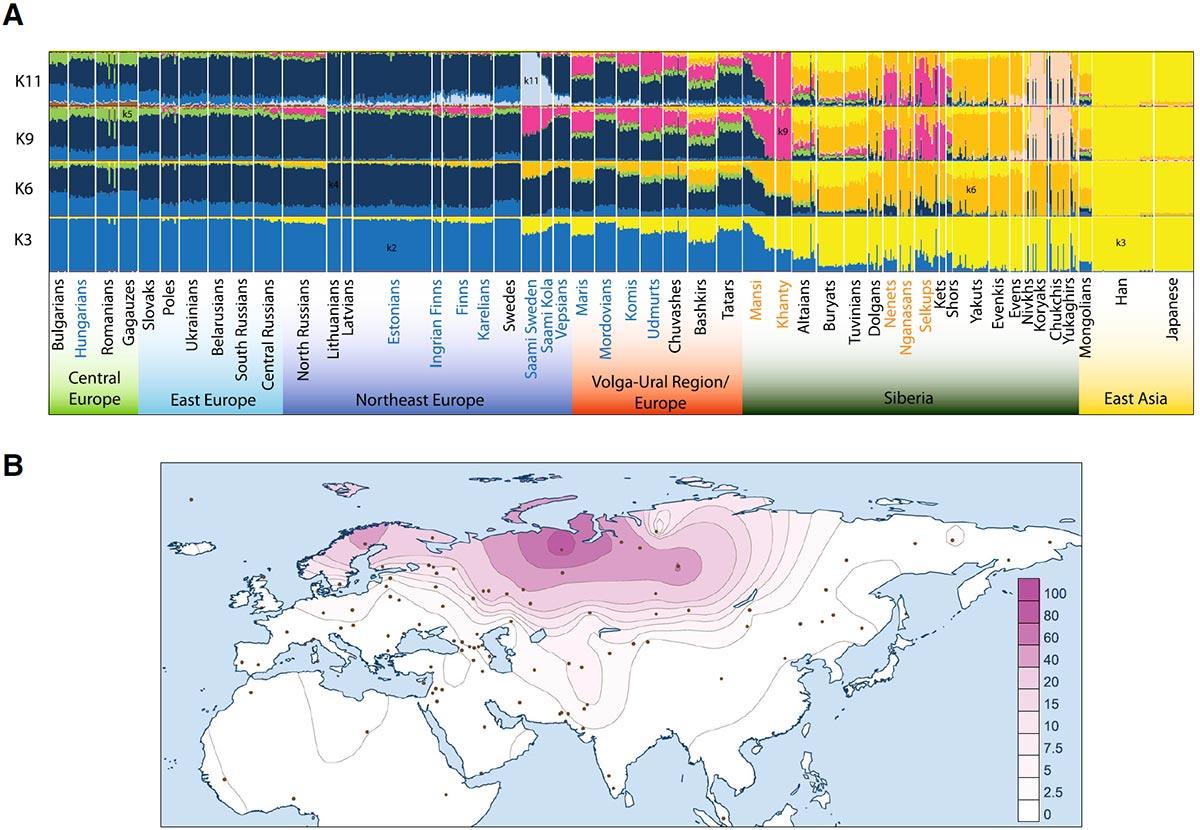 siberian-ancestry