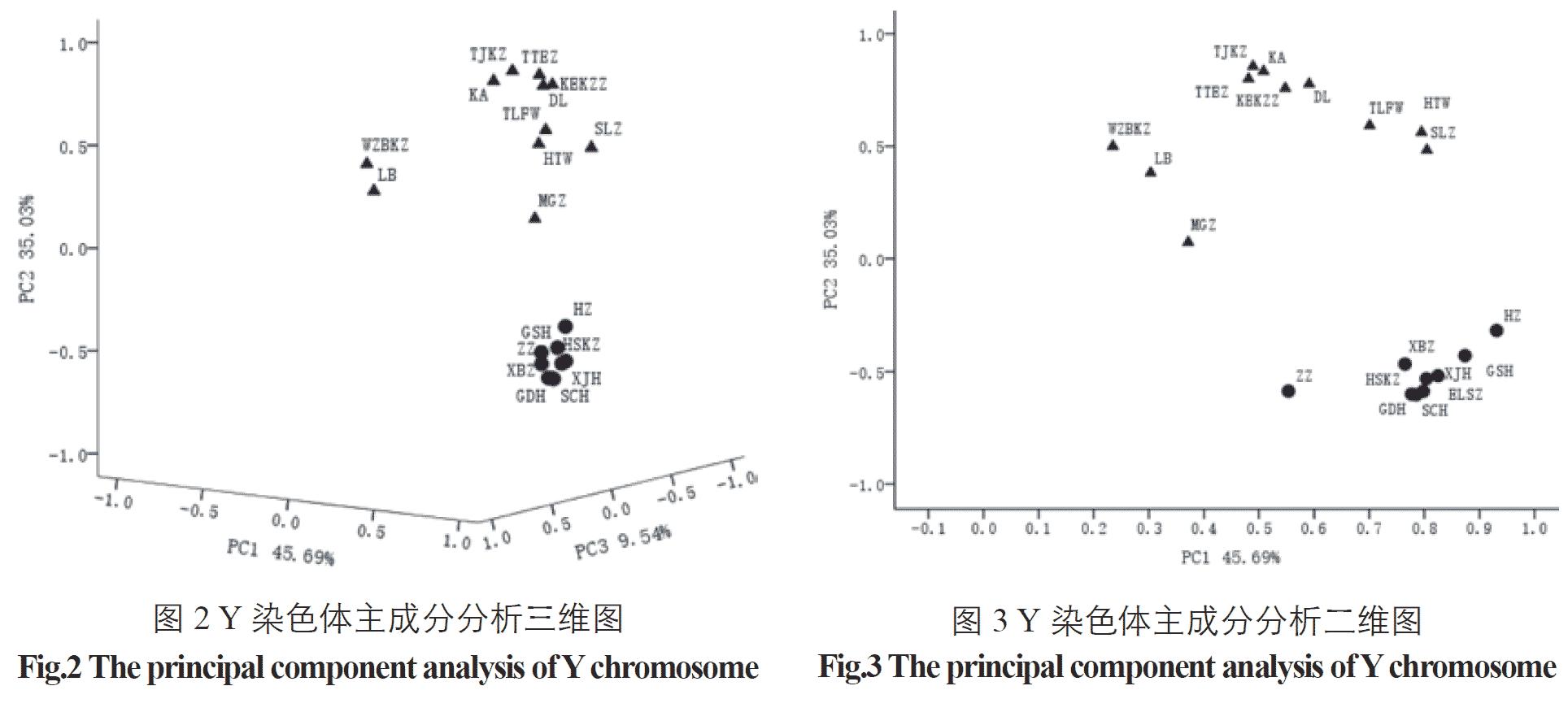 y-chromosome-pca