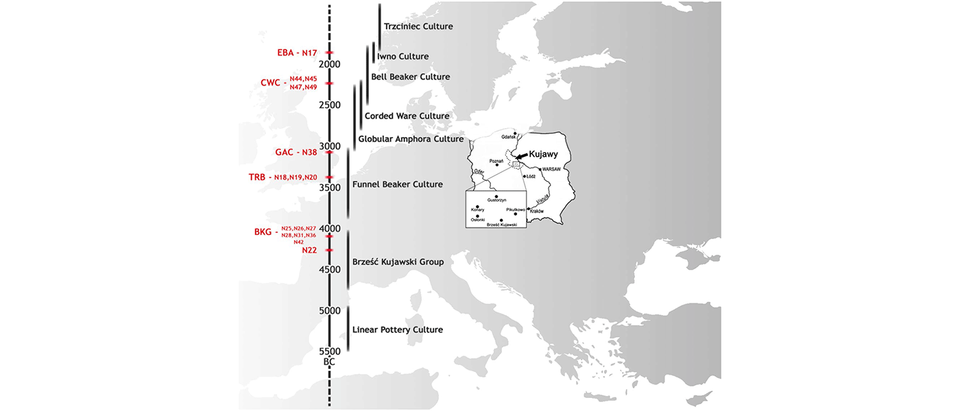 Resurge of local populations in the final Corded Ware culture period from Poland