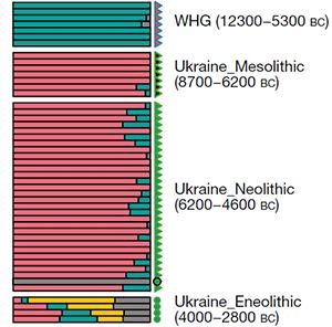 ukraine-whg-ehg-steppe