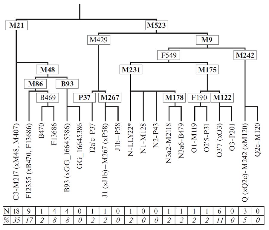 ulchi-y-chromosome