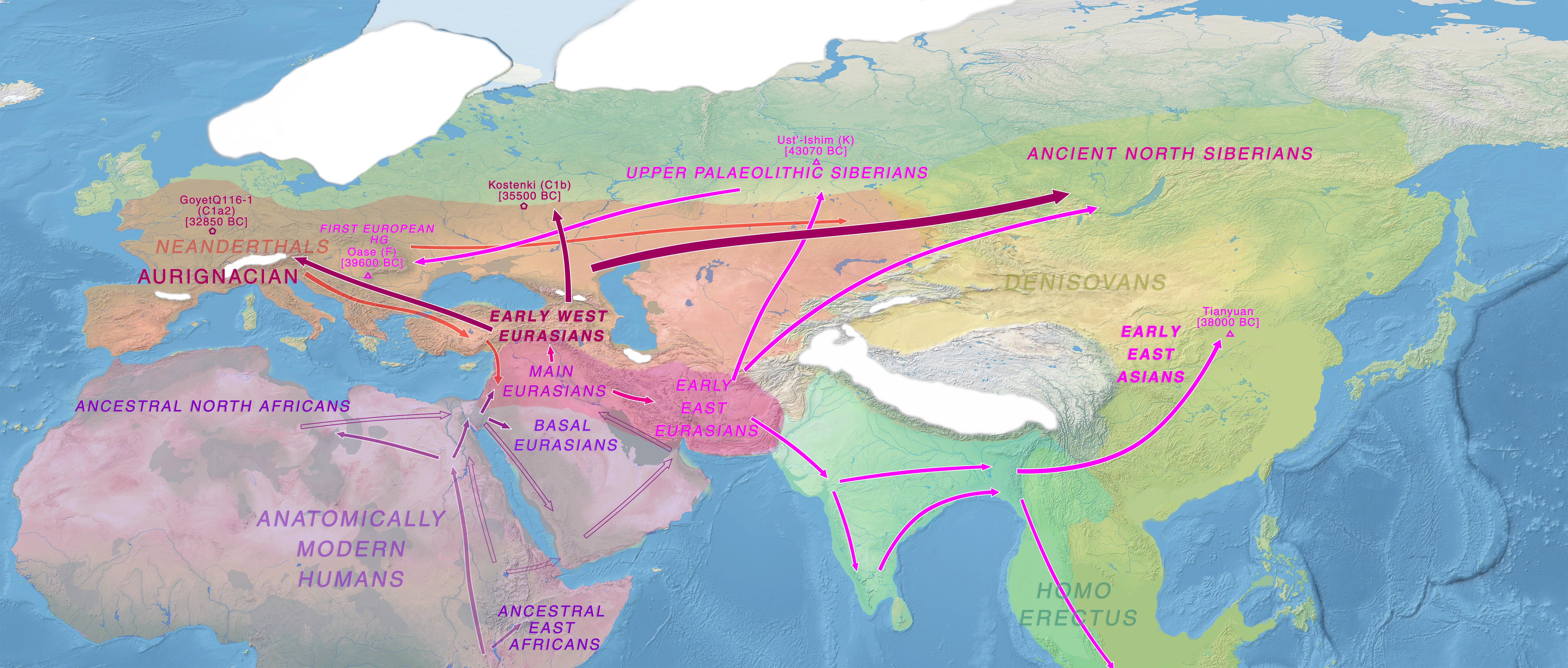 Out Of Africa Indo European Eu
