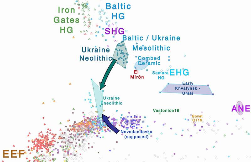 eneolithic-ukraine-corded-ware