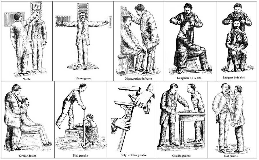 anthropometry-forensics