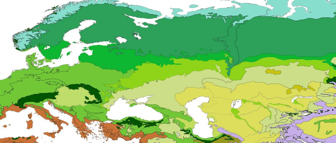 steppe-forest-steppe-biomes