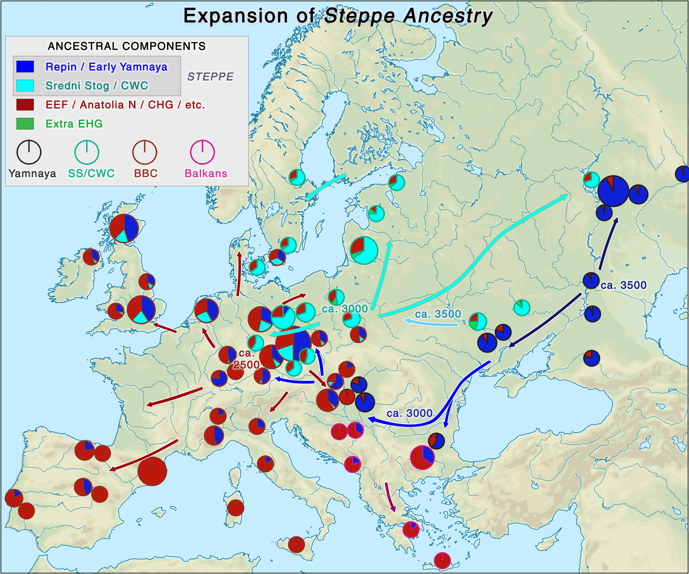Yamnaya steppe ancestry