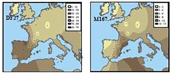 r1b-df27-m167-europe