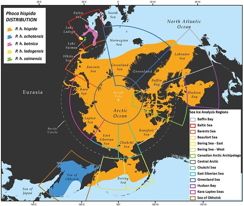 sea-distribution-arctic