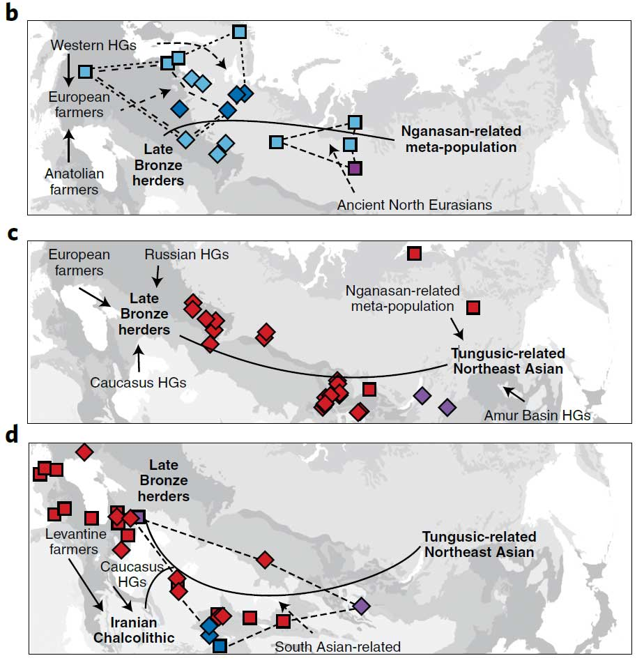 eurasian-clines-uralic-turkic-mongol-altaic