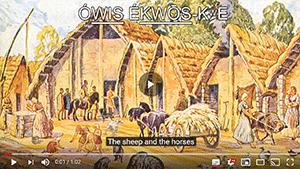 steppe-ancestry