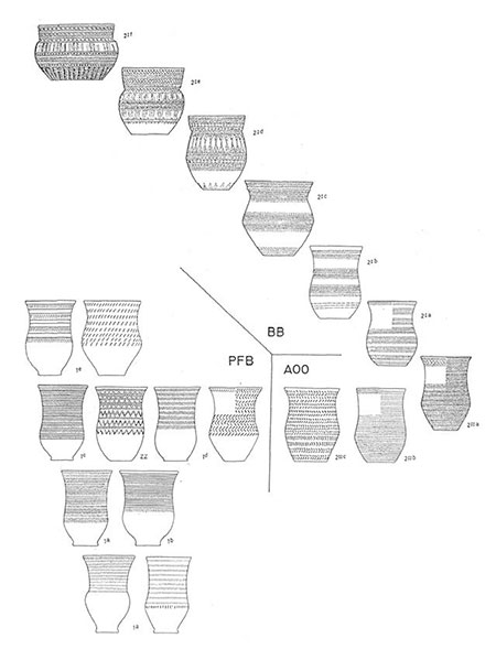 all-over-ornamented-beakers