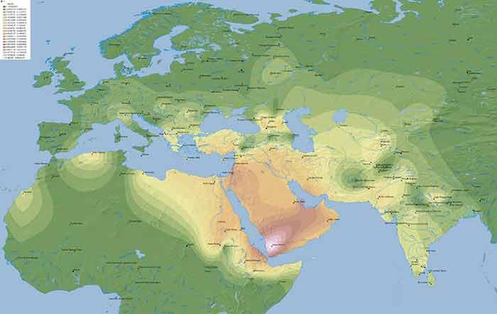 haplogroup-j-m304