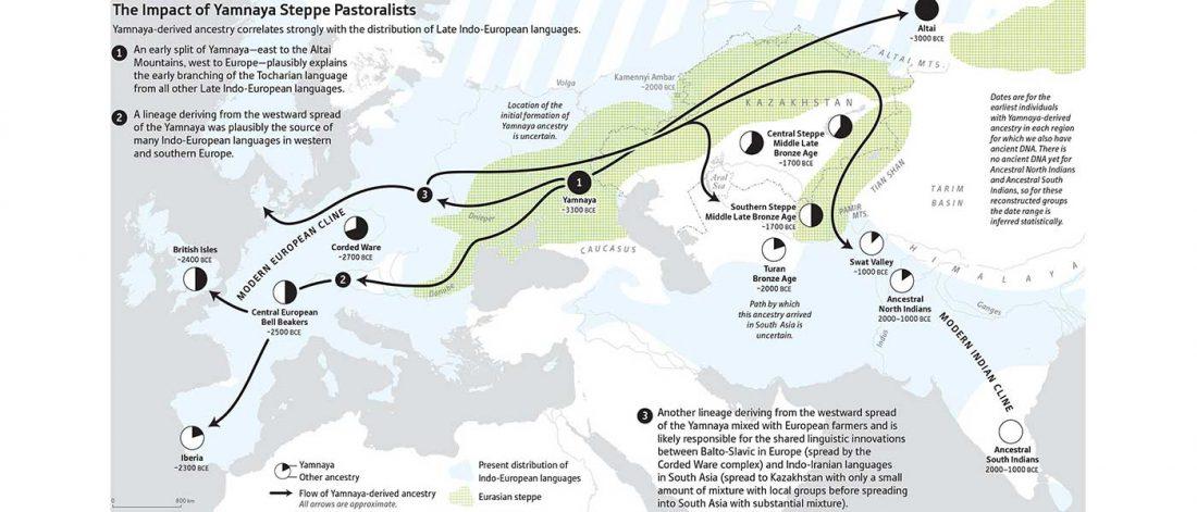 narasimhan-spread-yamnaya-ancestry