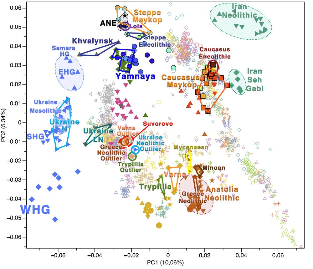 pca-suvorovo-novodanilovka-khvalynsk-trypillia-greece-ukraine-neolithic-outlier