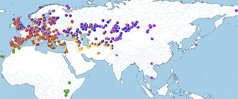 admixture-ancestry-map