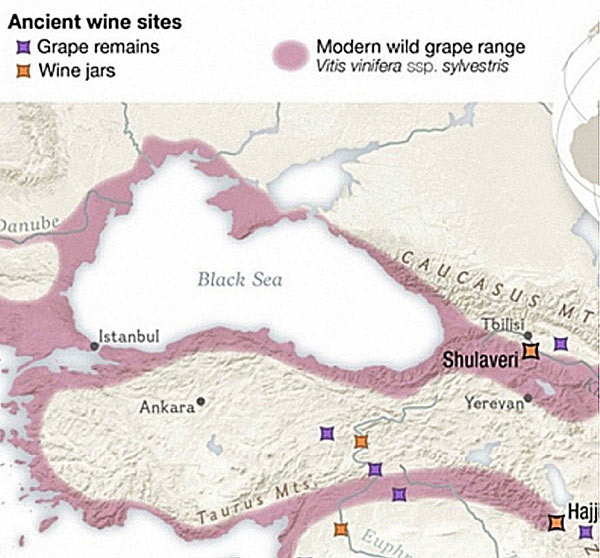 grape-wine-ancient-map