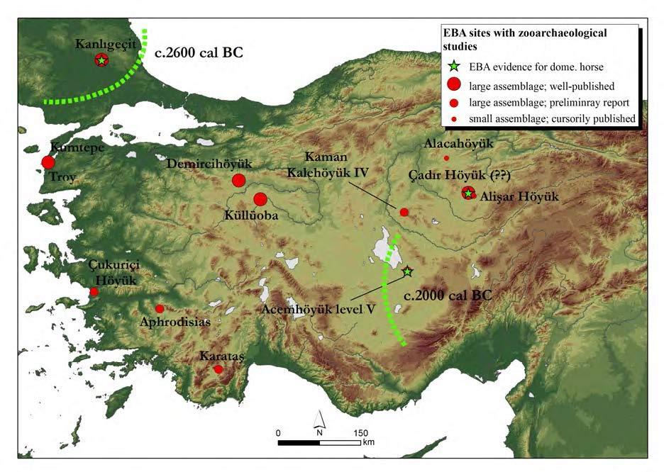 horses-west-anatolia-bronze-age