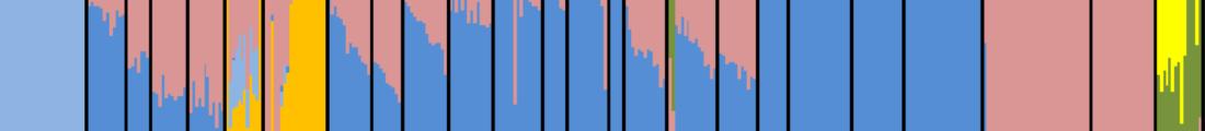 west-eurasian-admixture
