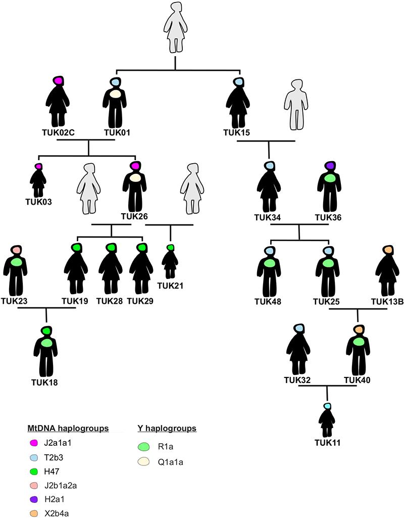 keyser2020-xiongnu-turkic-family-genealogy
