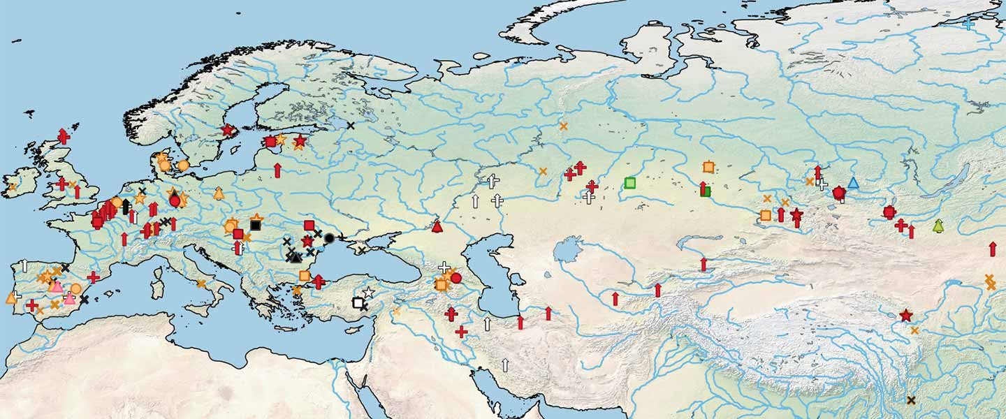 Origin of DOM2 closing in on the Pontic-Caspian steppes