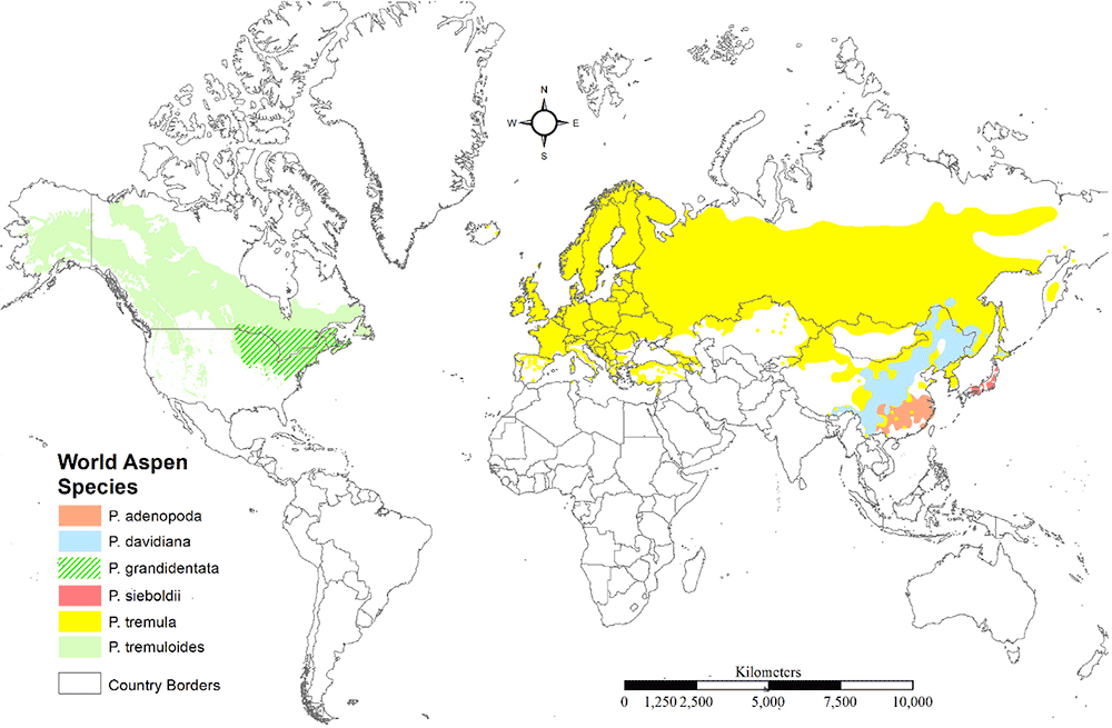 aspen-distribution-map