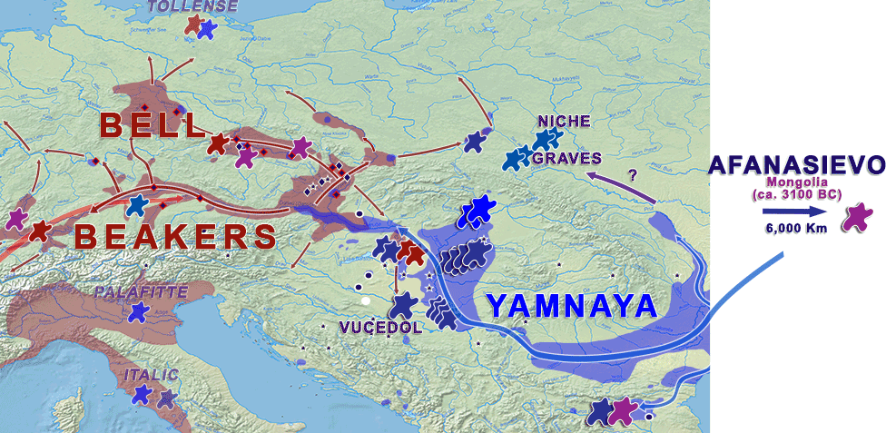 basal-haplogroup-r1b-l51-z2103-yamnaya-bell-beaker