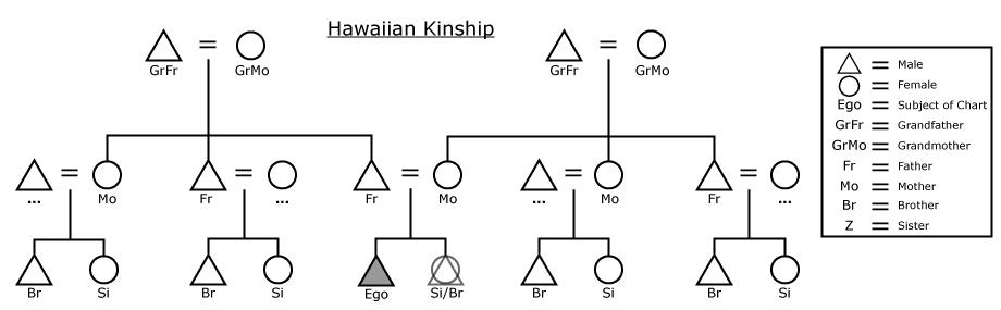 hawaiian-kinship-chart