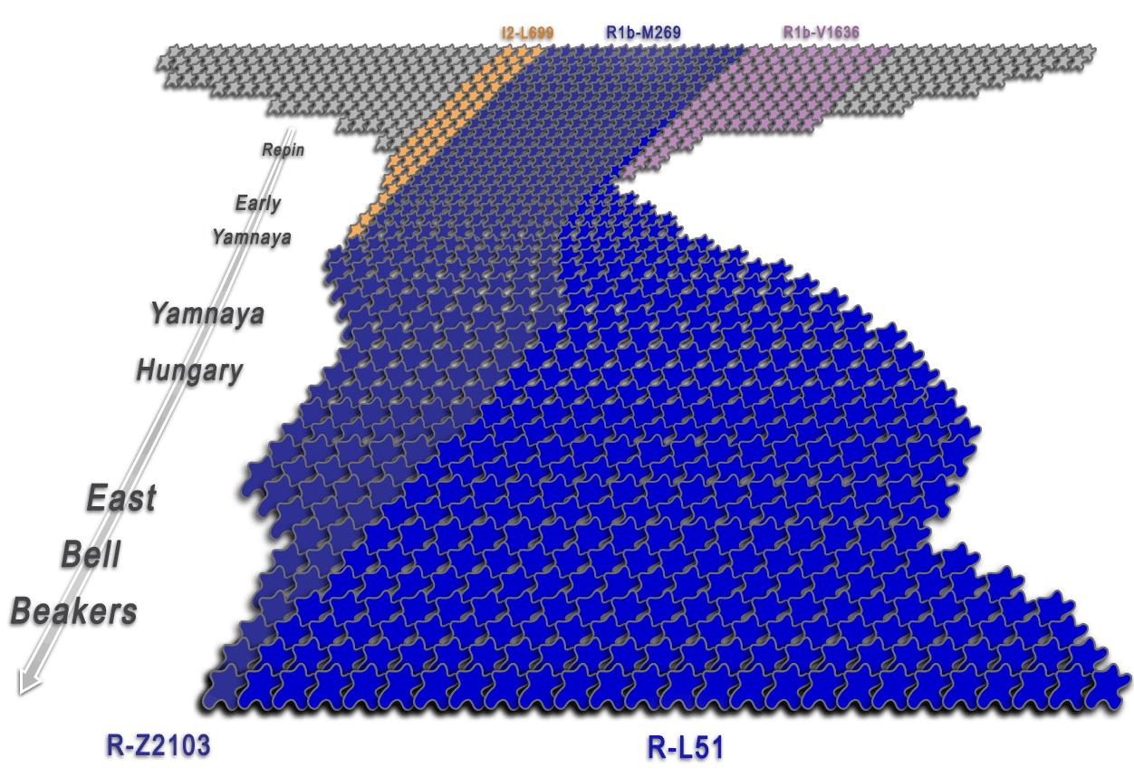 proto-indo-european-y-dna-bottlenecks