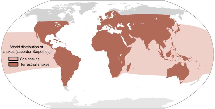 snake-world-distribution